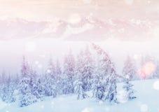 De geheimzinnige majestueuze bergen van het de winterlandschap Stock Foto's