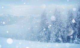 De geheimzinnige majestueuze bergen van het de winterlandschap in Stock Foto's