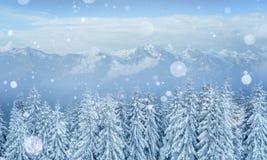 De geheimzinnige majestueuze bergen van het de winterlandschap in Royalty-vrije Stock Foto's