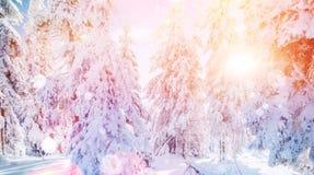 De geheimzinnige majestueuze bergen van het de winterlandschap binnen Stock Afbeelding