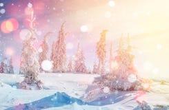 De geheimzinnige majestueuze bergen van het de winterlandschap in de winter Magische de wintersneeuw behandelde boom De kaart van Royalty-vrije Stock Afbeeldingen