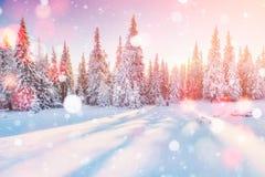 De geheimzinnige majestueuze bergen van het de winterlandschap in de winter Magische de wintersneeuw behandelde boom De kaart van Royalty-vrije Stock Foto
