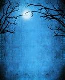 De geheimzinnigheid van Nocturne achtergrond Stock Foto