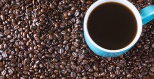 De gehele achtergrond van koffiebonen met blauw gevulde koffiekop Royalty-vrije Stock Foto