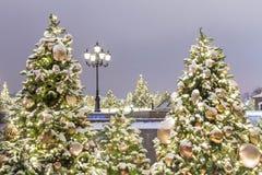 De geklede omhoog Kerstbomen van het nieuwjaar voor de vakantie royalty-vrije stock afbeelding