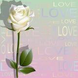 De gekleurde achtergrond van brieven 'houdt van' en een bloem van wit nam toe Stock Foto's