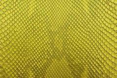 De gele achtergrond van de de huidtextuur van de pythonsnack. Stock Foto