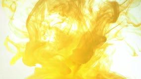 De gele acrylwolken die zich in vloeistof bewegen, sluiten schot Vage achtergrond Abstracte achtergrond van gele verf in vloeisto stock videobeelden