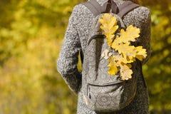 De gele bladeren in een rugzak, een meisje bevindt zich in een de herfstbos stock afbeeldingen