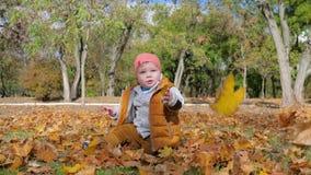 De gele bladeren vallen op leuk weinig jongenszitting bij gazon in park op achtergrond van groene bomen in de herfst stock video
