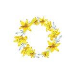 De gele bloemen van de schetslelie Royalty-vrije Stock Afbeeldingen