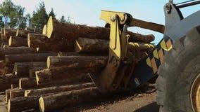 De gele bulldozer vervoerden logboeken, bulldoz met logboeken stock footage