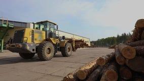 De gele bulldozer vervoerden logboeken, bulldoz met logboeken stock videobeelden