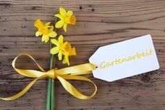 De gele de Lentenarcis, Etiket, Gartenarbeit betekent tuinierend stock afbeeldingen