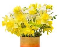 De gele gele narcissen (narcissen) bloemen in een trillende gekleurde vaas, sluiten omhoog, witte geïsoleerde achtergrond, Stock Afbeeldingen