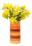 De gele gele narcissen (narcissen) bloemen in een trillende gekleurde vaas, sluiten omhoog, witte geïsoleerde achtergrond, Royalty-vrije Stock Foto's