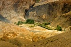 De gele kleurrijke rotsen en de stenen, landen, ladakh landschap Leh, Jammu Kashmir, India op de maan Royalty-vrije Stock Foto
