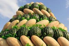 De gele meloenen van de hoop en grote groene watermeloenen stock foto's