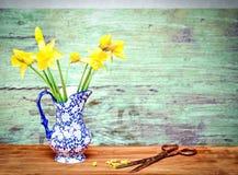 De gele narcissen van de lente royalty-vrije stock foto