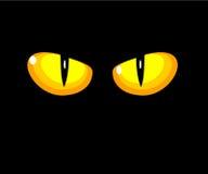 De gele ogen van de kat Stock Foto
