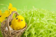 De gele pluizige kip van Pasen in een mand Royalty-vrije Stock Foto's
