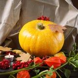 De gele pompoen met de herfstbladeren, bloeit en bessen Stock Afbeeldingen