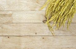 De gele rijst van de padiejasmijn op houten achtergrond Stock Foto's