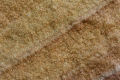 De gele steenoppervlakte met dwarslijn van zandige textuur Stock Foto's