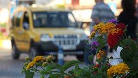De gele taxi stock video