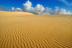 De gele vlaktes van de zandwoestijn Royalty-vrije Stock Fotografie