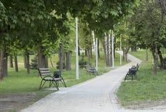 De gelegde weg met houten bankenbladeren in de afstand in het park van de stadszomer Royalty-vrije Stock Afbeeldingen