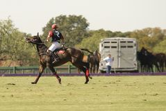 Polo Match stock afbeelding