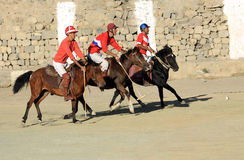 De gelijke van het polo op festifal Ladakh Stock Foto's