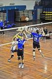 De gelijke van het volleyball Stock Afbeeldingen