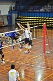De gelijke van het volleyball Royalty-vrije Stock Fotografie