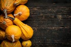 De gelukkige Achtergrond van de Dankzegging Selectie van diverse pompoenen op donkere houten achtergrond De herfstgroenten en sei royalty-vrije stock foto