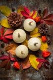 De gelukkige Achtergrond van de Dankzegging Selectie van diverse pompoenen op donkere metaalachtergrond Het stilleven van de herf stock fotografie