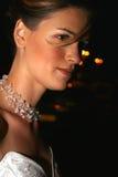 De gelukkige bruid. Royalty-vrije Stock Foto's