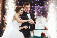 De gelukkige bruid en de bruidegom snijden de huwelijkscake in de voorzijde van firew Stock Afbeeldingen