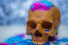 De gelukkige close-up van het de partijbeeld van schedelhalloween Stock Fotografie