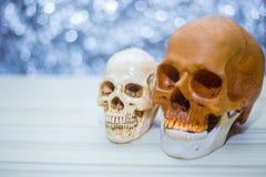 De gelukkige close-up van het de partijbeeld van schedelhalloween Royalty-vrije Stock Foto's