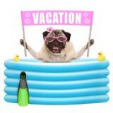 De gelukkige de zomerpug hond met zonnebril en de roze banner ondertekenen met tekstvakantie in opblaasbare pool Royalty-vrije Stock Foto's