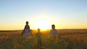 De gelukkige familie loopt langs een tarwegebied op een zonsondergangachtergrond Royalty-vrije Stock Foto's