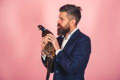 De gelukkige fazant van de mensengreep Creatief idee Vogelgriep Grappige reclame Gebaarde zakenman hipster Gekke mens op roze royalty-vrije stock afbeeldingen