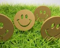 De gelukkige gezichten op het gazon met groen gras Royalty-vrije Stock Fotografie