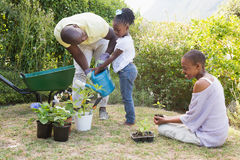 De gelukkige glimlachende familie plant samen bloemen Stock Afbeelding