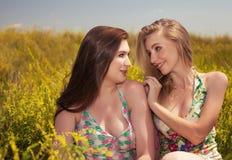 De gelukkige glimlachende meisjes die van het mensenconcept pret op het gebied hebben Stock Afbeelding