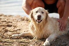 De gelukkige hond Labrador geniet van speel op strand met eigenaar stock afbeelding