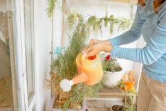 De gelukkige Jonge Aziatische bloemen van Watering van de Vrouwenhuisvrouw op Balkon stock foto
