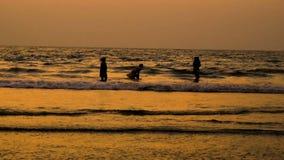 De gelukkige jonge die familie heeft pret op strand en sprong bij zonsondergang in werking wordt gesteld stock videobeelden
